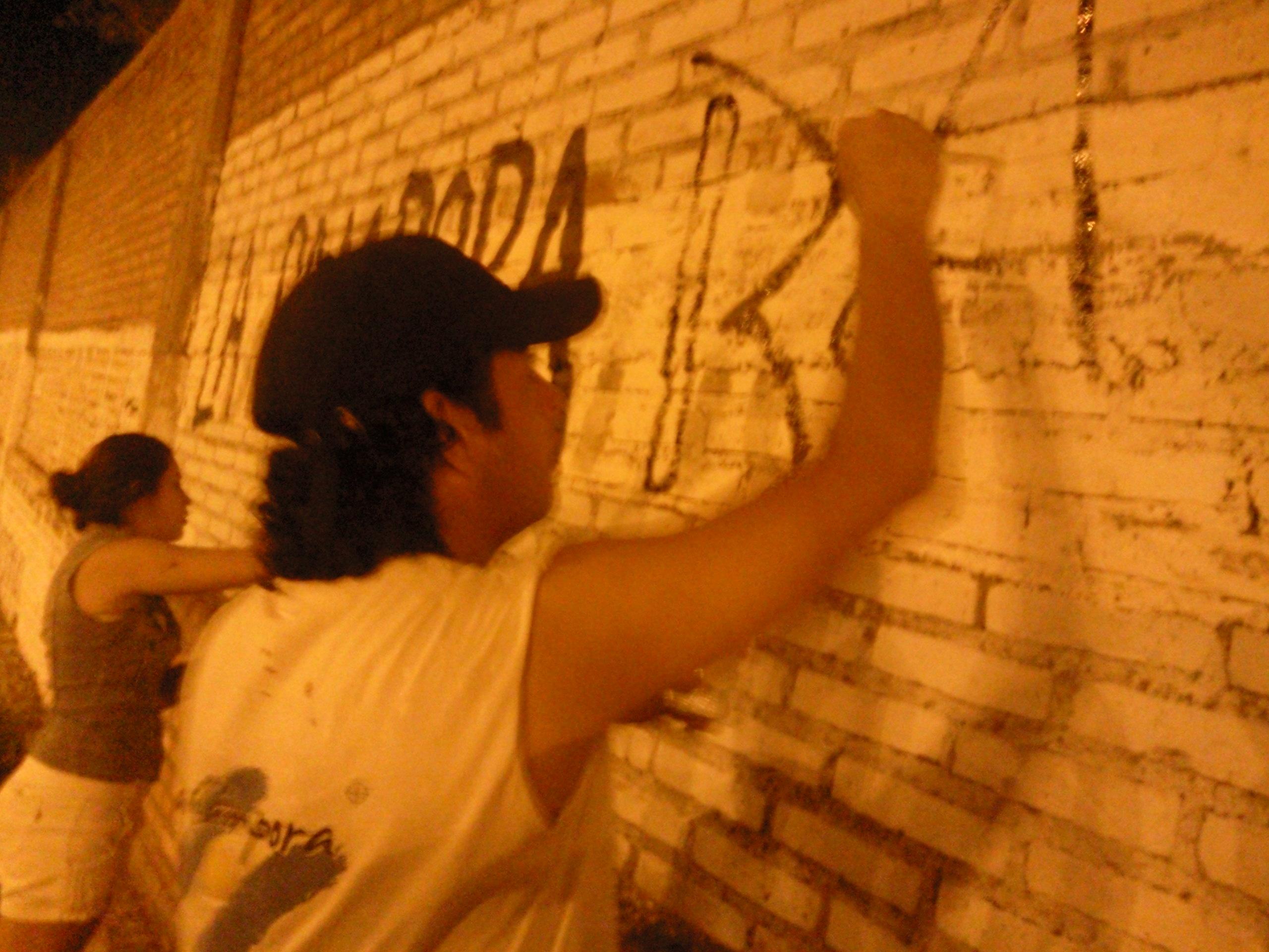 Pintadas en Santiago del Estero 02