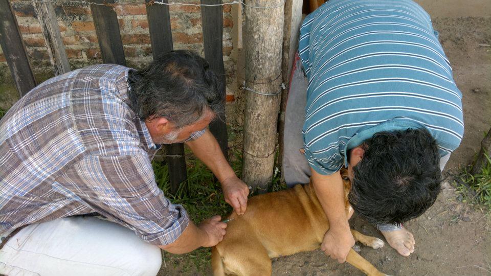 Militando en Corrientes